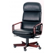 Dyrlund Executive juhitoolid - Intera